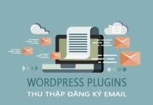 WordPress Plugin Email